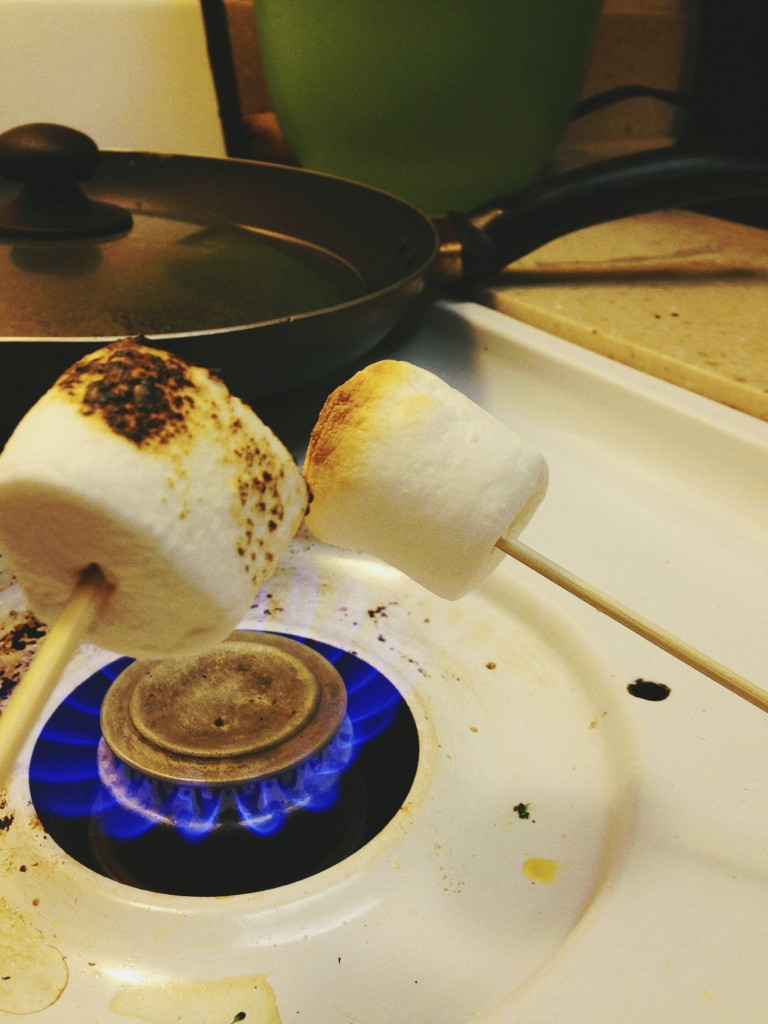 S'meaches are a magical combination of a s'more and a peach. Learn how to make them here!   The Road Home